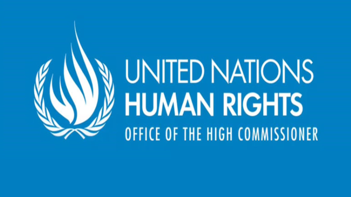 Image result for UN Human Rights